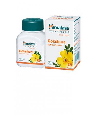 Himalaya Gokshura Tablets