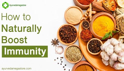 How to Increase Immunity Through Ayurveda